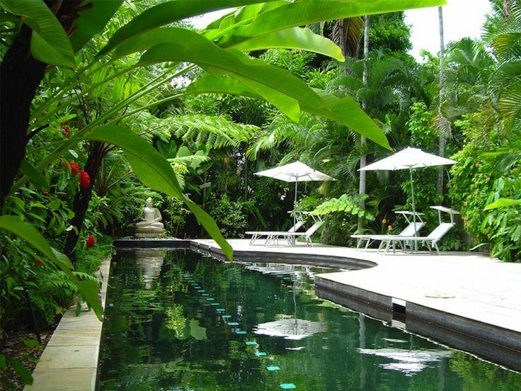 Tropical gardens grndoordesign for Gardens around pools